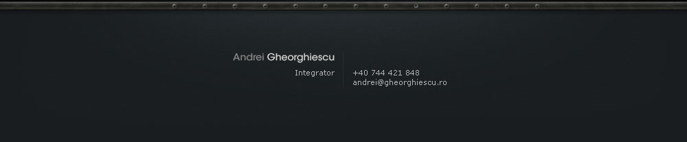 Andrei Gheorghiescu contact details